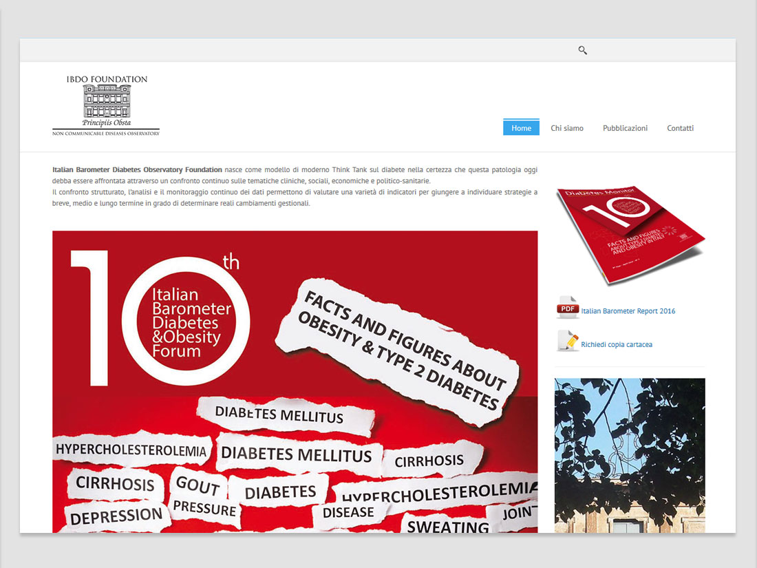 word+image - ibdo web site